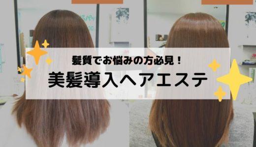 パサパサの傷んだ髪を改善!美髪成分導入ヘアエステ!